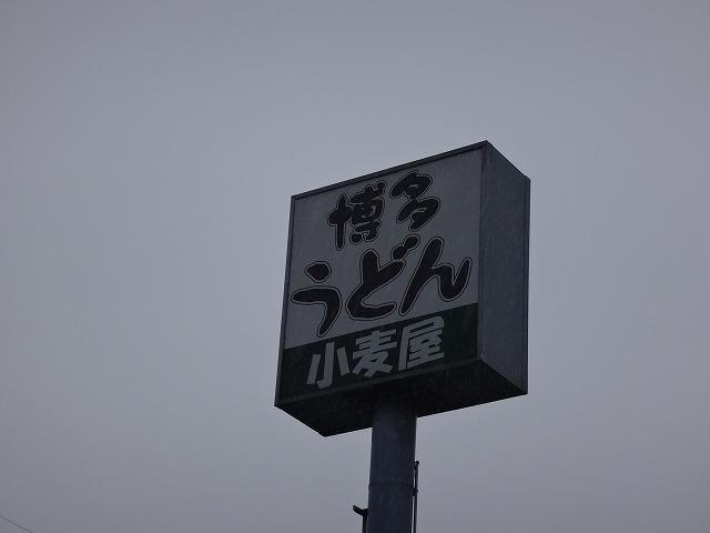 DSC02041.jpg